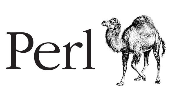 Picture of Perl Programming Fundamentals