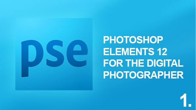 Picture of Photoshop Elements 12 Digital Photography